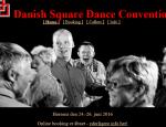 DanskaConv2016